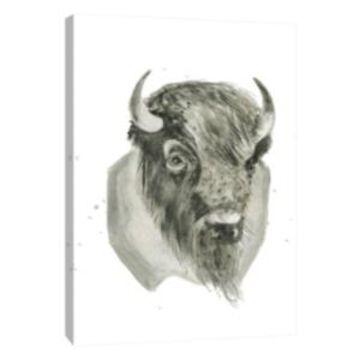 Ptm Images, Bison Bust Decorative Canvas Wall Art