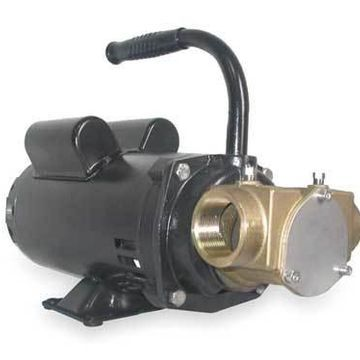 DAYTON 3ACD4 Pump,Flexible Impeller,1 1/2 HP,115/230V
