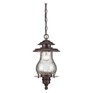 Acclaim Lighting 8206 Blue Ridge 1 Light Outdoor Lantern Pendant