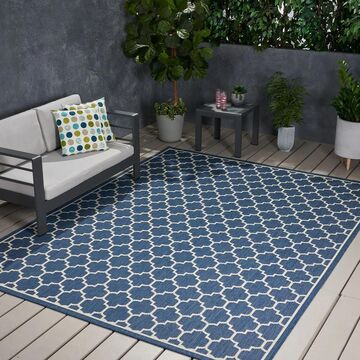 Ifran Outdoor Area Rug by Christopher Knight Home (7'10