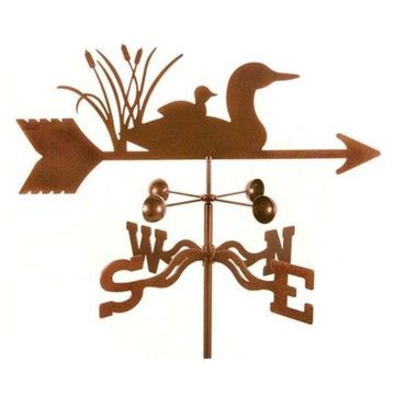 EZ Vane Loon Bird Weathervane With Roof Mount