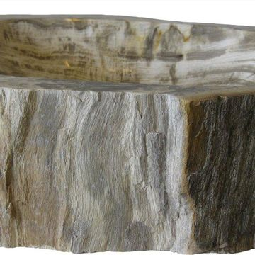 Petrified Fossil Wood Vessel Sink, Irregular Shape and Color