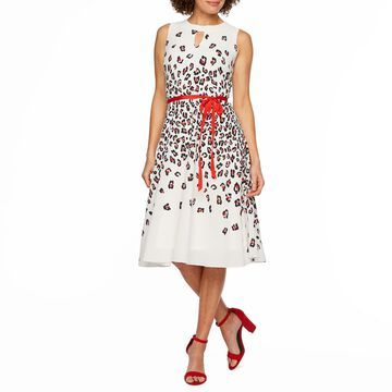 Danny & Nicole Sleeveless Leopard Fit & Flare Dress