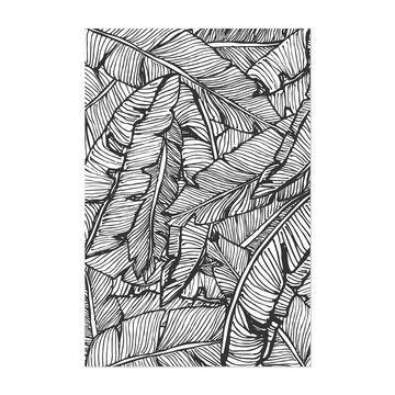 Noir Gallery Black & White Banana Leaf Unframed Art Print/Poster
