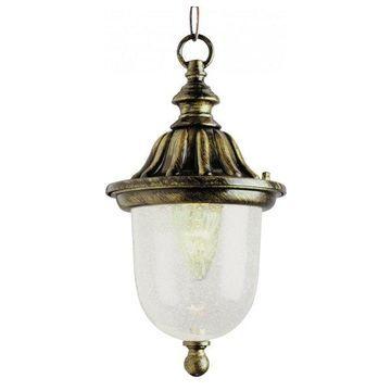 Trans Globe 4185 BG 1-Light Hanging Lantern