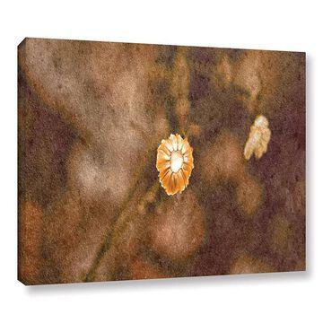 ArtWall Center Of Attention Canvas Wall Art, Brown, 36X48