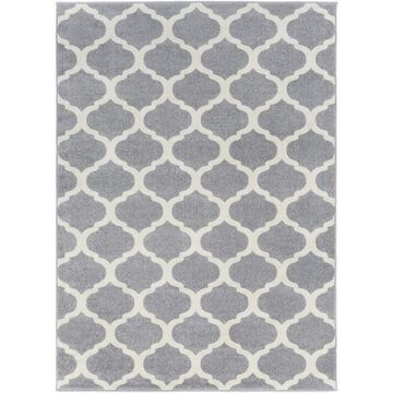 Surya Horizon 3 x 5 Medium Grey Indoor Trellis Area Rug in Gray