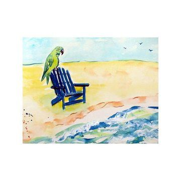 Betsy Drake Parrot and Chair 30