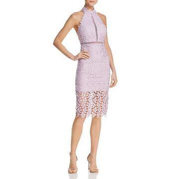 Bardot Womens Gemma Lace Ladder Stitch Cocktail Dress