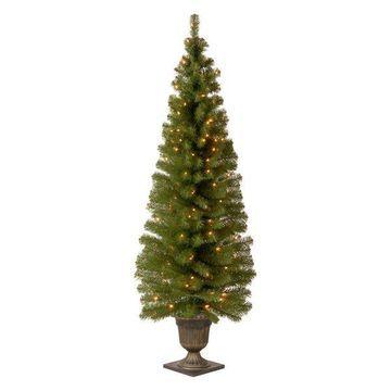 National Tree Company Christmas Decorations 6' Montclair Spruce Entrance Tree