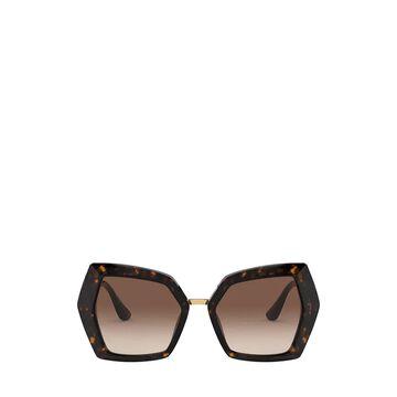 Dolce & Gabbana Dolce & Gabbana Dg4377 Havana Sunglasses