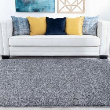 Bliss Rugs Bradford Shag Indoor Area Rug
