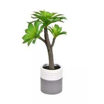 Vickerman Succulent In Ceramic Pot -