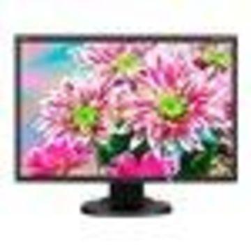 NEC MultiSync E223W-BK - LED monitor - 22