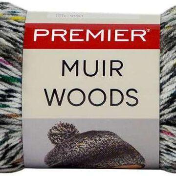 Premier Yarns Muir Woods Steelhead