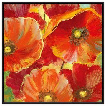 PTM Images, Poppy Garden Detail I