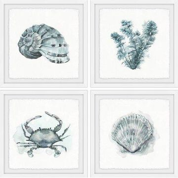Marmont Hill Sea Life Quadriptych