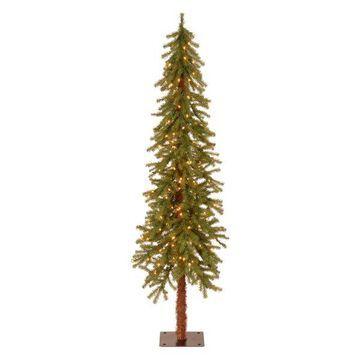 National Tree Company 6' Hickory Cedar Tree 200 Clear Lights