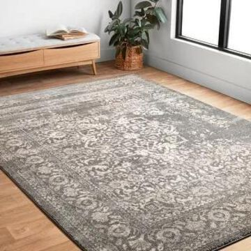 Alexander Home Brentley Traditional Distressed Medallion Area Rug