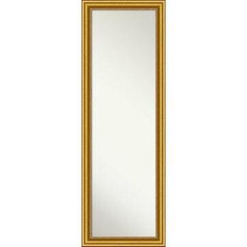 Amanti Art Townhouse 18x52 On The Door/Wall Mirror