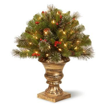 National Tree Company 24 in. Artificial Crestwood Spruce Bush Plant, Green