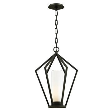 Troy Lighting Whitley Heights 1-light Textured Black Outdoor Pendant