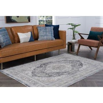 Bliss Rugs Rupin Transitional Indoor Area Rug