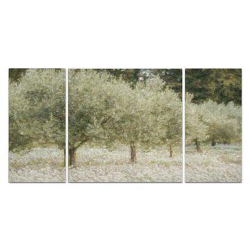 Wexford Home 'Paintograph Olive Trees' Canvas Premium Multi Piece Art