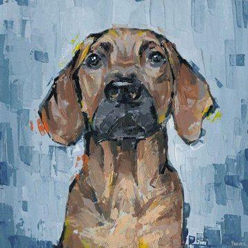 Parvez Taj Attentive Dog Canvas Wall Art