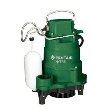 Pentair Myers 1/3 hp 2880 gph Cast Iron Submersible Sump Pump