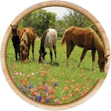 Thirstystone Drink Coasters Set, Yearlings and Wildflowers