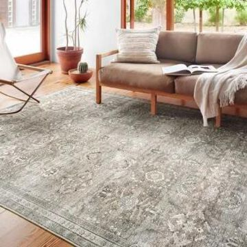 Alexander Home Isabelle Shabby Chic Vintage Distressed Green Area Rug