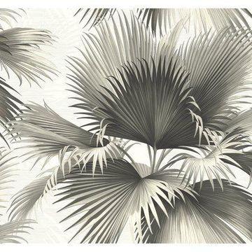 Kenneth James Endless Summer Black Palm Wallpaper