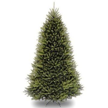 National Tree Company 10-Foot Dunhill Fir Artificial Christmas Tree