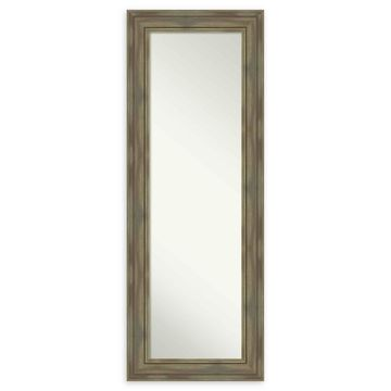 Amanti Art Alexandria Framed On The Door Mirror