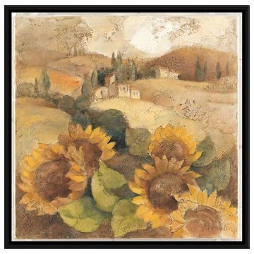 PTM Images Tuscan Sunflowers