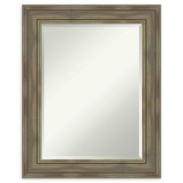 Amanti Art Alexandria Greywash Framed Wall Mirror