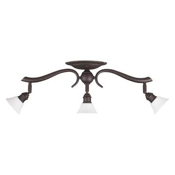 Canarm Addison 3-Head Track Light, Oil Rubbed Bronze