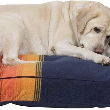 Pendleton Grand Canyon National Park Pillow Dog Bed w/Removable Cover