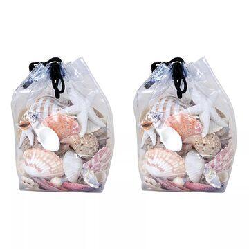 Pomeroy Decorative Faux Shell Vase Filler 2-piece Set
