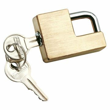Reese Towpower Brass 5/8in. to 1in. 1.9 in. Coupler Lock