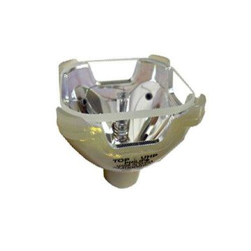 Infocus SP-LAMP-007 Multimedia Video Projector Original Projector Bulb
