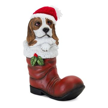 Melrose Beagle in a Santa Boot