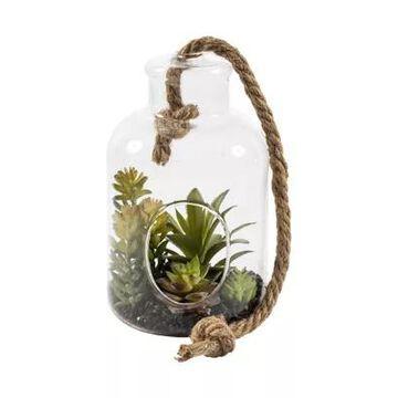 Vickerman Green Assorted Succulents In Glass Jar -