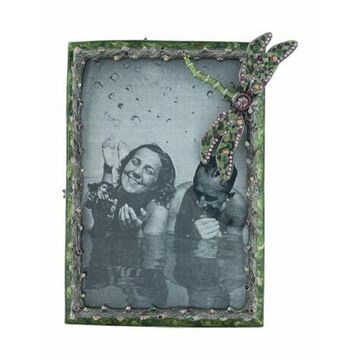 Dragonfly Picture Frame Grey
