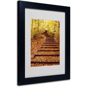 Trademark Art 'Fall Stairway' Framed Matted Art by Kurt Shaffer