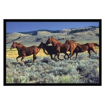 Trends International Animal Horses Wall Poster 22.375
