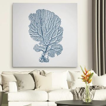 Wexford Home 'Coral Sketch Blue I' Canvas Art Print