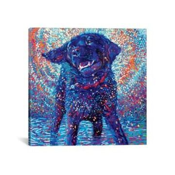 """iCanvas Canines & Color by Iris Scott Wrapped Canvas Print - 37"""" x 37"""""""