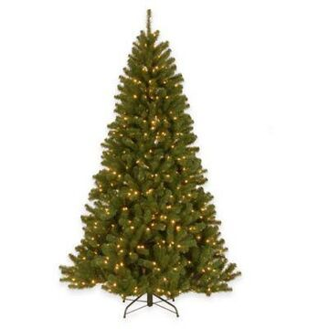 National Tree Company 7-Foot North Valley Spruce Pre-Lit Hinged Christmas Tree w/Clear Lights